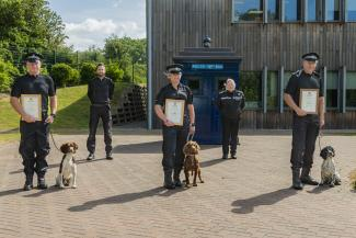 Police Dogs Sam, Roost and Blue on the double!