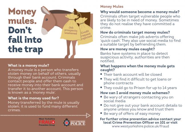 Money Mules Leaflet